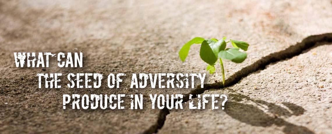 Seed of Adversity