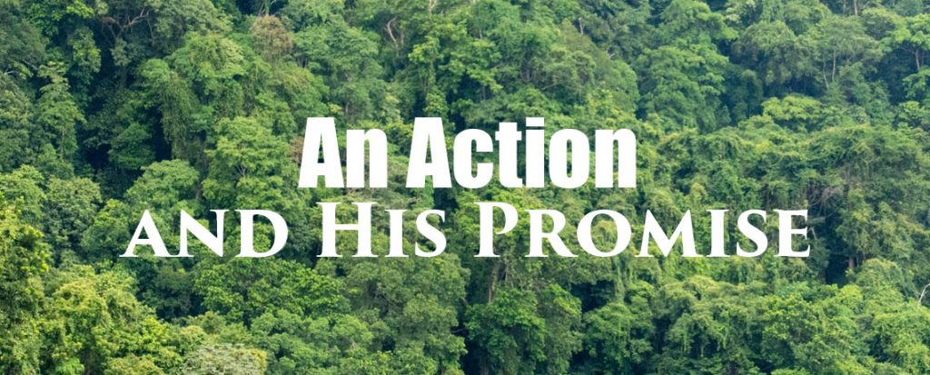 An Action and His Promise